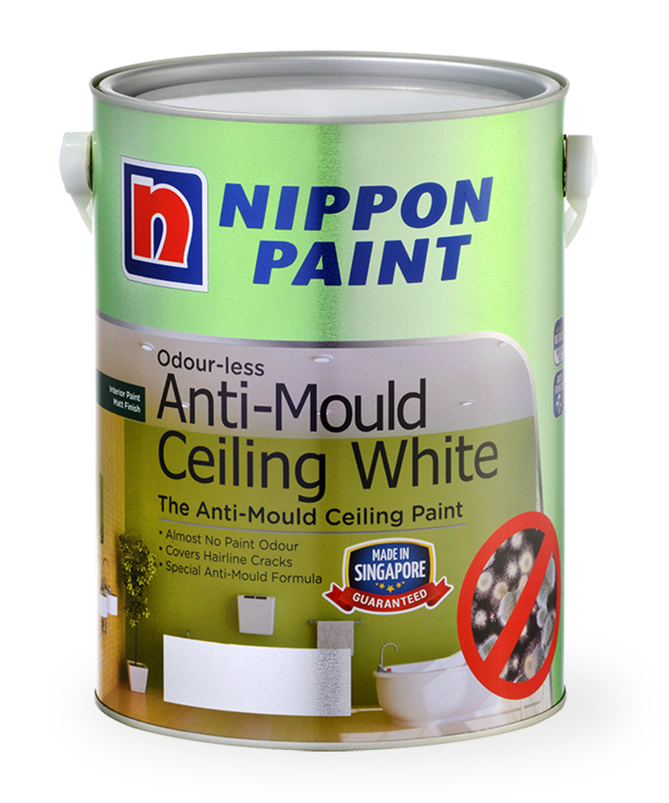 Best anti mould paint for bathroom ceiling - Best exterior paint to prevent mold ...