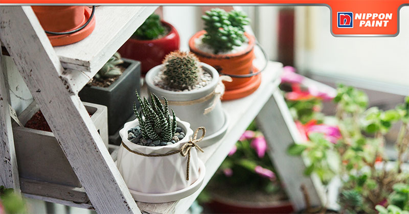 5-ways-to-have-a-lush-indoor-garden-feature-image