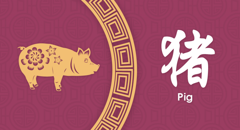 猪 Pig- Nippon Paint Colours of Fortune 2020