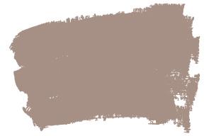 mushroom-brown-np-n-1882-t