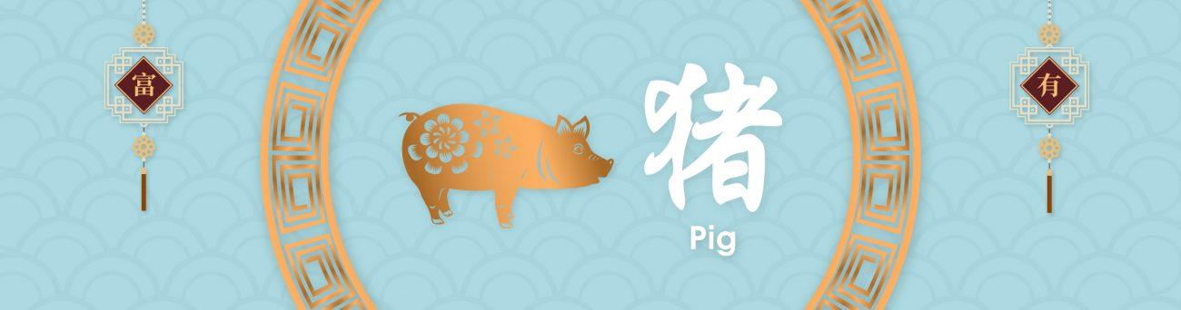 pig-inner-banner