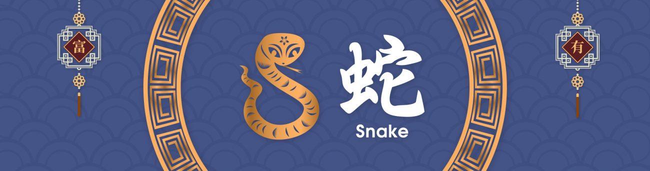 snake-inner-banner