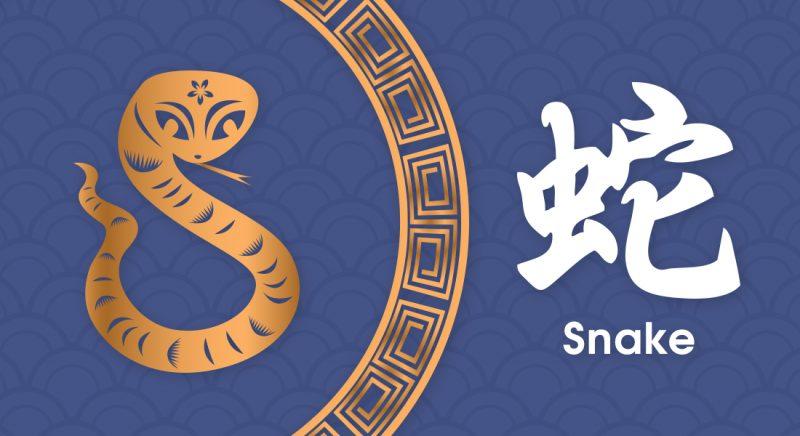 蛇 Snake- Nippon Paint Colours of Fortune 2019