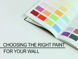 Choosing the Right Paints for your Wall