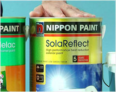 Choosing the Right Paints for your Wall - Step 5